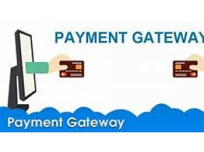 Global Payment Gateways Market 2019-2025: Global Information, Growth