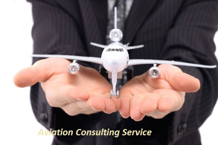 Global Aviation Consulting Service Market Size, Share