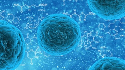 Discover Global Cell Therapy Market Size, Share, Trends, Growth, Report Value, Business Opportunities, Industry Classification Analysis By 2023