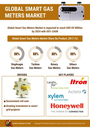 Smart Meters Market 2019 Size, Growth, Share, Merger, Trends