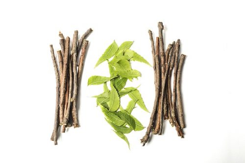 Ayurveda Market Size, Share 2019, Global Business Growth