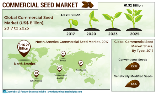 Commercial Seed Market 2019 by Size Estimation, Share, Business