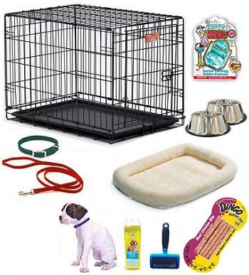 Global Pet Accessories Market Size - Reuters